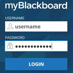 Logging in to Blackboard, Enter username and password and select login